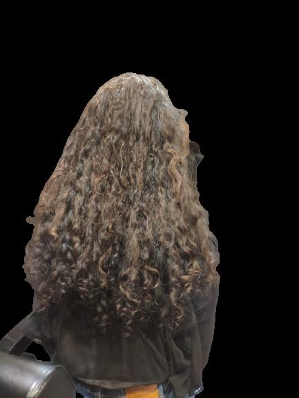 תוספות שיער קונדלראסטה - ללא רקע (2)